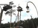 Жилплощадь на дереве законно или нет Вести 24