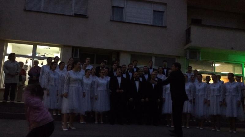 Златна вила 2018 (хор из Сербии)