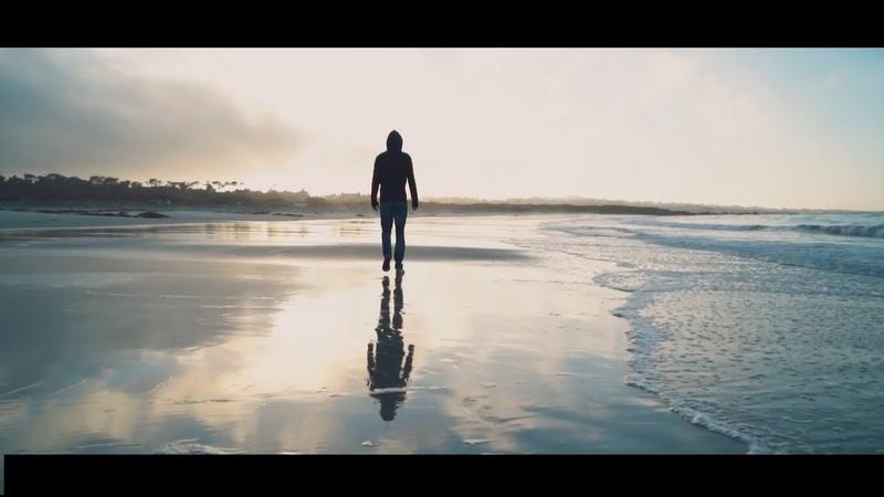 Alan Walker - Beautiful Life