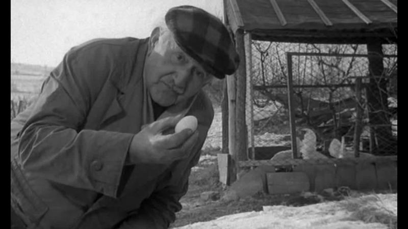 ЛЮБОВНЫЙ СЛУЧАЙ ИЛИ ТРАГЕДИЯ СЛУЖАЩЕЙ ПОЧТОВО ТЕЛЕГРАФНОГО УЗЛА 1966 драма Душан Макавеев 720p