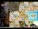 Сайт релиз с корзиной для on-line заказов за 5000 руб. | Удобный каталог с публикацией из Instagram | 7 978 75-100-18