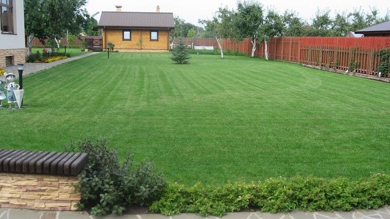 Подкормка газона – легко и быстро!