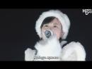 Momoiro Clover Z – Shiroi Kaze (рус.саб)