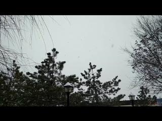 No More Snow (music - ZEECOOL, strings - Sound Storm String Quartet)