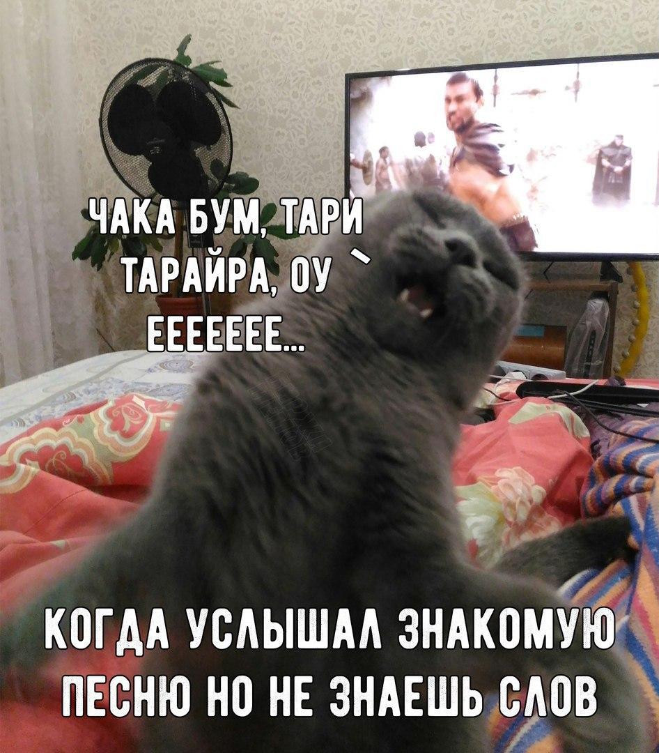 xdHtrAvpnFw - Предновогодние гифки  - смотреть всем!