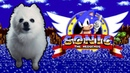 SONIC - GREEN HILL ZONE em CACHORRÊS