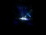 Цирк Дю Солей в Питере с новой программой OVO