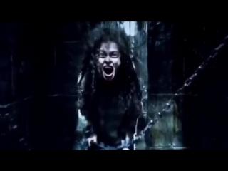 Bellatrix lestrange vs lord voldemort | harry potter vine