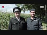 Двое молдавских полицейских и марихуана