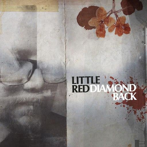 Little Red альбом Diamond Back