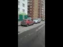 Новосибирск без табака - Live