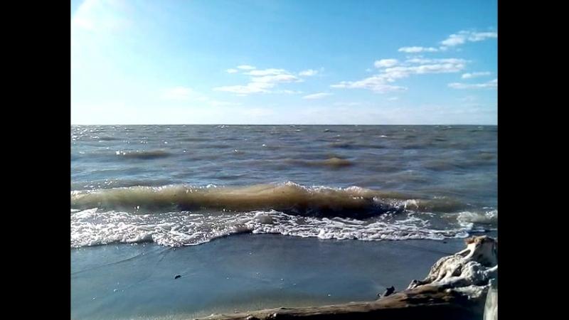Обское море в сентябре