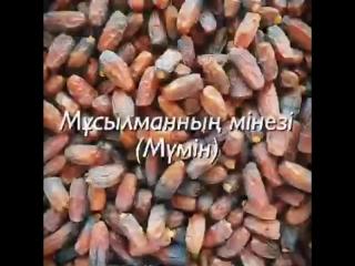 [v-s.mobi]Ерлан Ақатаев ұстаз.mp4