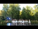 Шоу «Лебединое озеро» в Майданово!