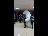 Белый медведь по имени Изюм 38-56-58