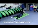 Упражнение Ныряющий лебедь
