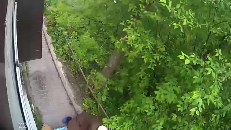 Прохожий снес бабушку с тротуара в Златоусте