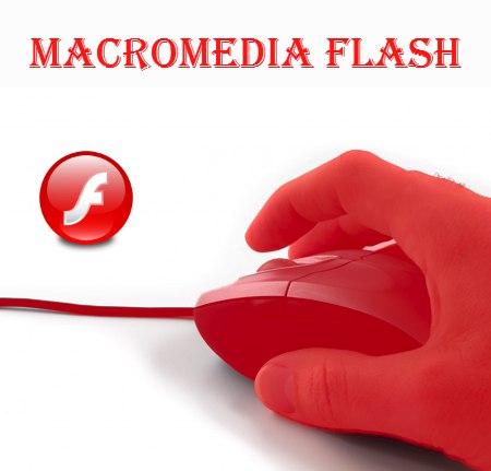 Macromedia Flash программасы