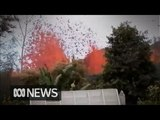 Hawaii resident goes home to find spewing lava in his backyard