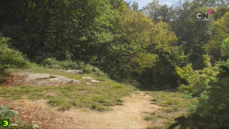 Пахучий (2 часть) -- удивительный мир гамбола (новая серия)