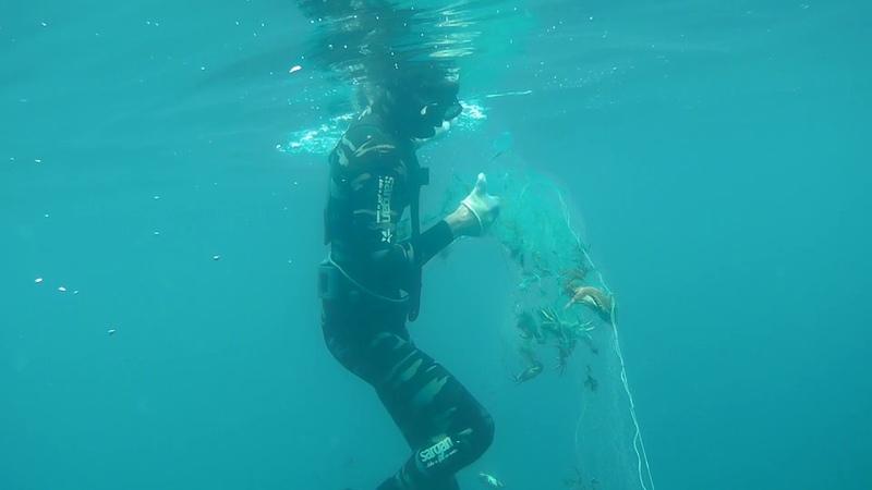 Подводная охота Кто как не мы