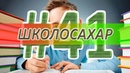 ШКОЛОСАХАР 41 CS 1.6