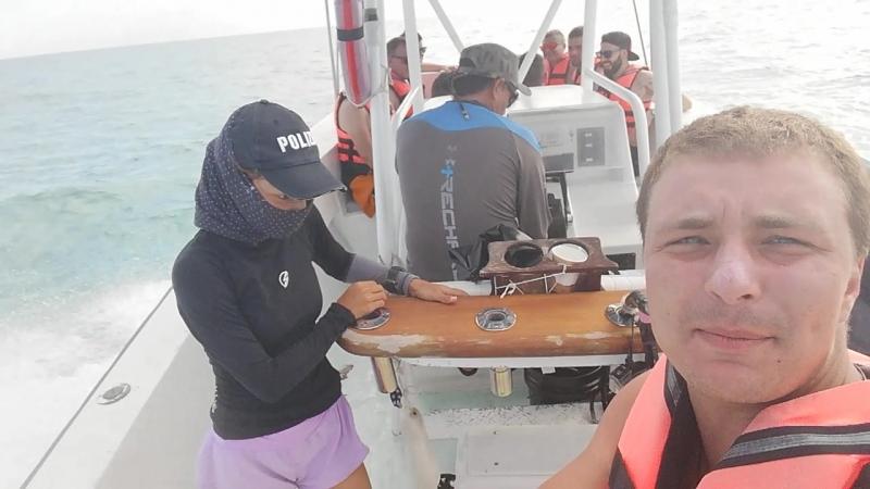 на встречу с китовыми акулами