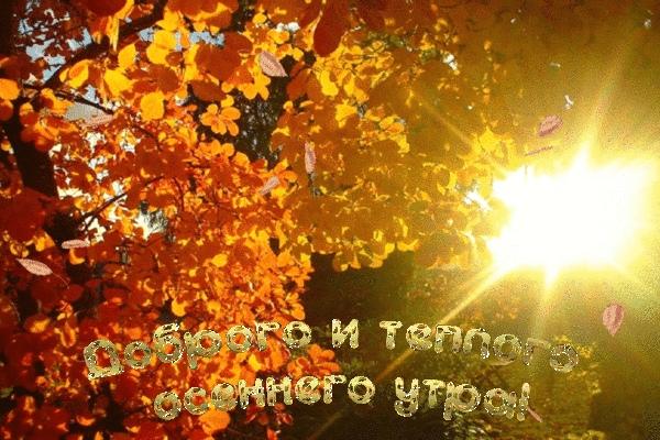 С добрым пятничным утром и с началом бабьего лета, друзья!)