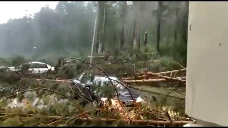 1664 Россия Ураган Град Алтайский край 13 июля 2018