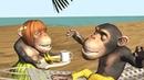 Funny Good Morning Song. Monkeys sing Good Morning