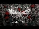 Transit Saturna - Hawk Moth