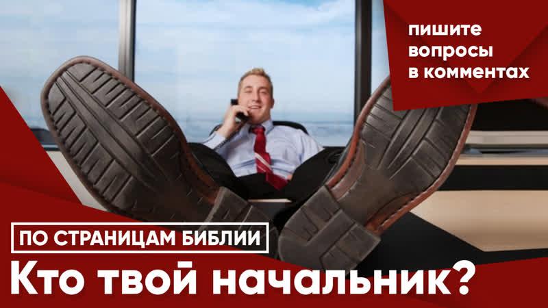 Кто твой начальник?