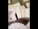 Кирпич шамотный огнеупорный арочный клиновой