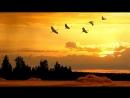 Песни военных лет - Летят перелетные птицы фотоклип.