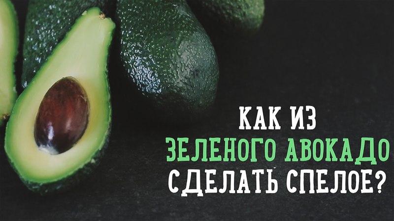 Как из зеленого авокадо сделать спелое