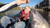 Fishing for catfish &amp shad from Kayak - drifting for catfish Trolling for shad