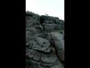 Встреча со степной лисой на горе Юрактау!