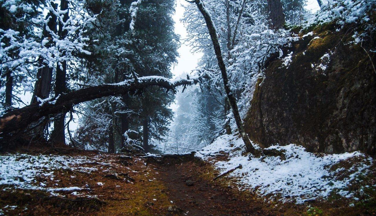 Роскошные пейзажи Норвегии - Страница 38 LV0-kUpkz-o
