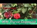 ЖК Лучезарный Новостройки Краснодара АН Ключи