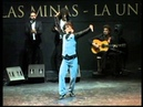 52º Festival del Cante de las Minas Jesús Carmona Premio Desplante 2012