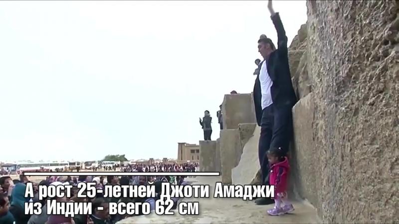 Видео встречи самого высокого мужчины и самой маленькой женщины в мире