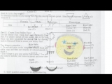 Вот такой малыш получился у меня на уроке Science :)