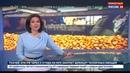 Новости на Россия 24 Новый элеватор для хранения зерна открыли в порту Новороссийска