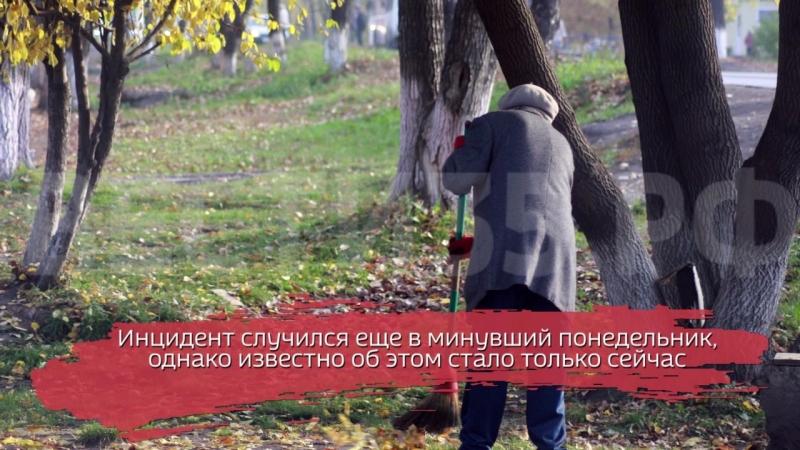 Неизвестные выстрелили из пневматики в женщину-дворника