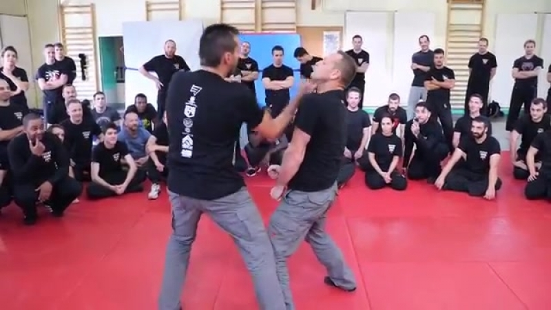 Fred Mastro _ Mastro Defence System _ MDS _ Technique Compilation.mp4