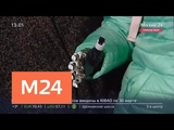 Искалеченная мужем-ревнивцем Маргарита Грачева показала новый протез кисти - Москва 24