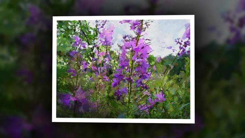 Flower.Цветы.Моя цифровая живопись.