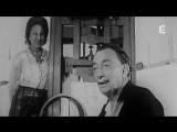 Dali, l'homme qui aimait les muses (documentary) (French TV, France 5) (2005)