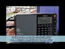 NHK Radio Japan in Englisch am 17 07 2018 um 5 Uhr UTC auf 5975 KHz via Moosbrunn AUT