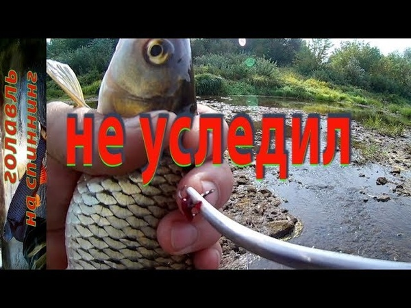 В этот раз обошлось... Голавль на спиннинг. Рыбалка на малой реке.
